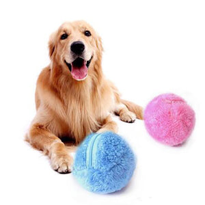 Magic Roller Ball Dog Cat Toy Activation Automatic Ball Chew Plush Floor Clean Toys Electric Pet