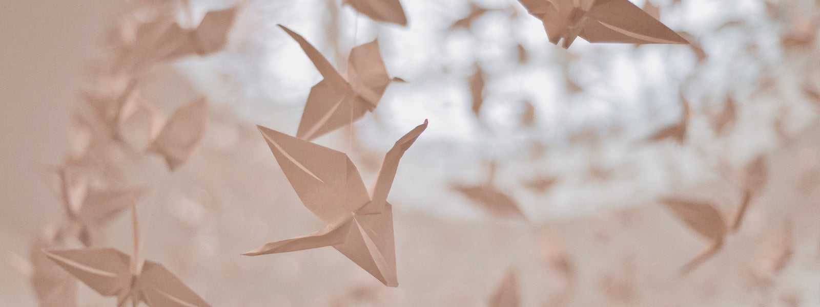Beautiful Equations Blog - The Maths of Origami. A flock of origami cranes hangs from a skylight.