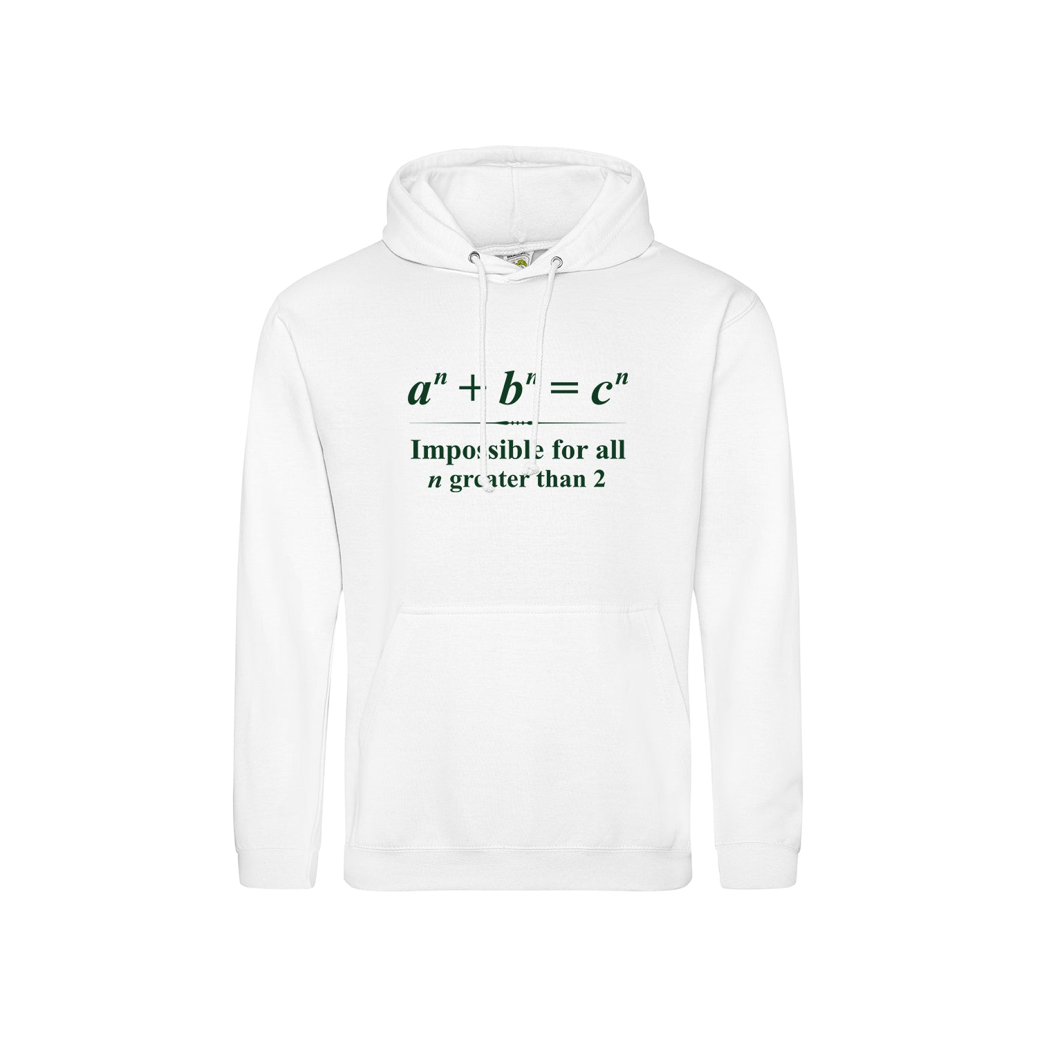 Fermat's Last Theorem Men's Hoodie