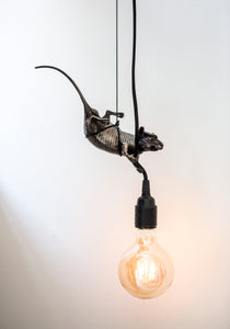 'Rat giving light' (Hanging)