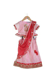 Organic Pink Lehenga Choli With Red Dupatta