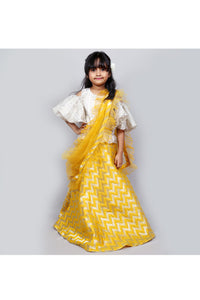 Brocade skirt with foil print top and frilly dupatta