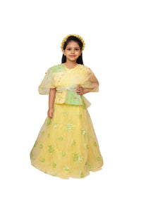 Partywear lehenga for girls, Designer partywear lehenga, Lehenga sets for girls