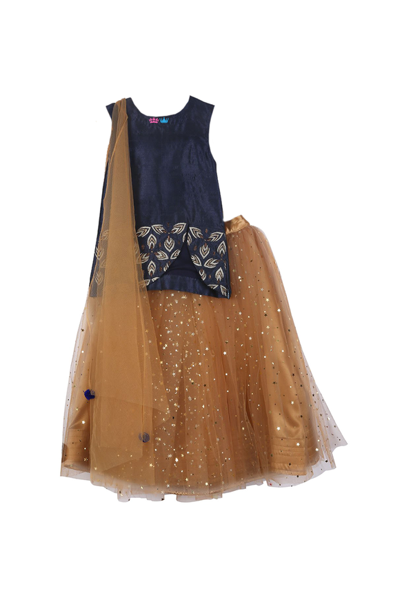 Star Lehenga with Embroidered Top with attached Dupatta