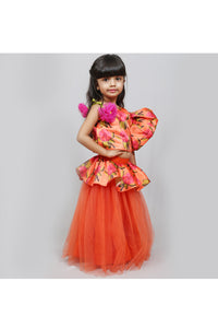 One shoulder frilled printed top with net skirt