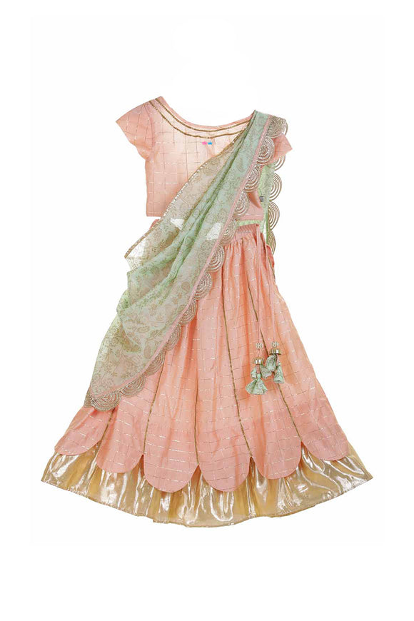 Partywear organic lehenga for girls, Designer partywear  organic lehenga, Organic lehenga sets for girls