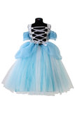 Frozen tutu Gown
