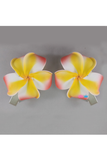 Multi color flower clips
