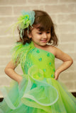 Green Blue Shaded Feather Gown