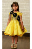 Yellow Seq CU cut Frock