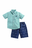 Summer Set Of Green Check Shirt With Pineapple Embedded Denim Shorts