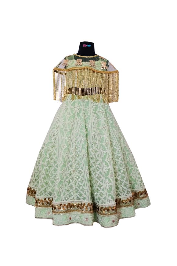 Lucknowi gown with cape