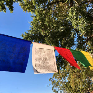 Large Prayer Flags, 8m span, 25 flags, 5 different deities