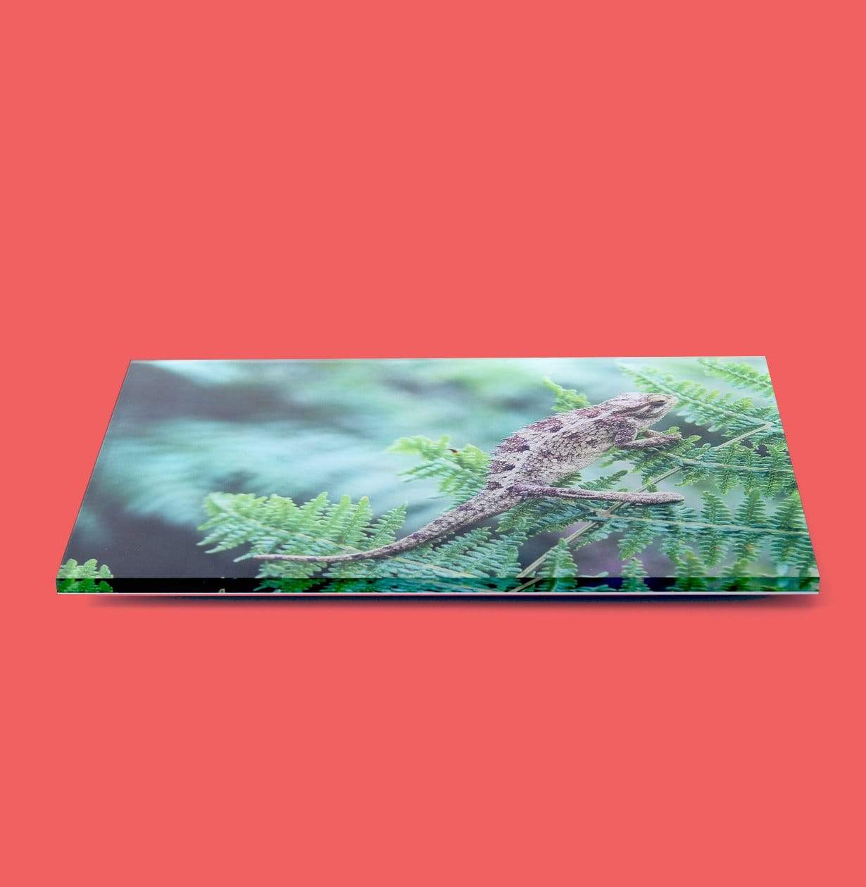 Side-View of Acrylic Photo Print