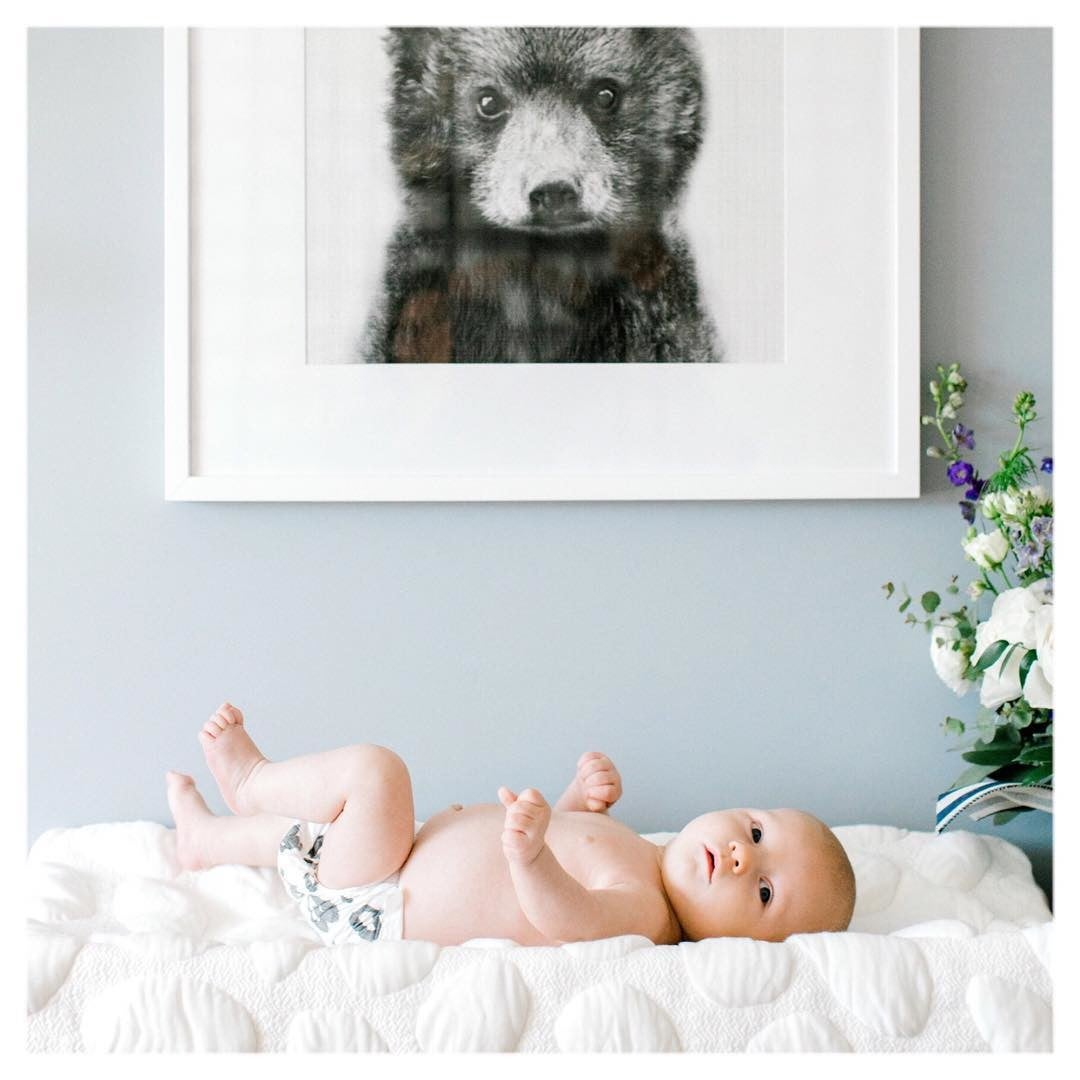 Black & White Baby Bear Photo in White Picture Frame in Nursery