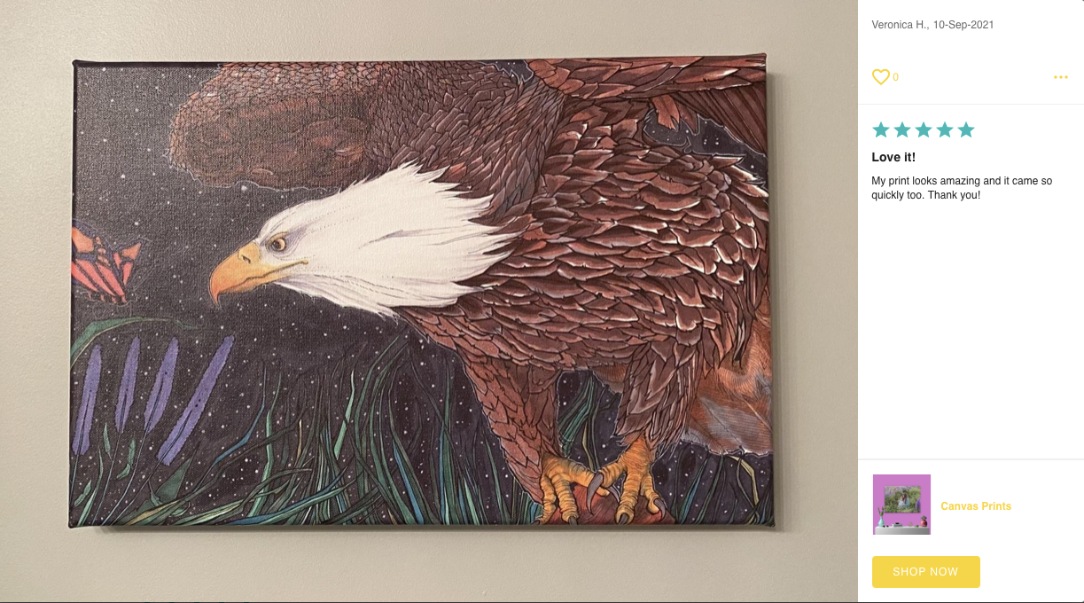 Canvas Print Photo and Review by Posterjack Customer - Eagle Artwork