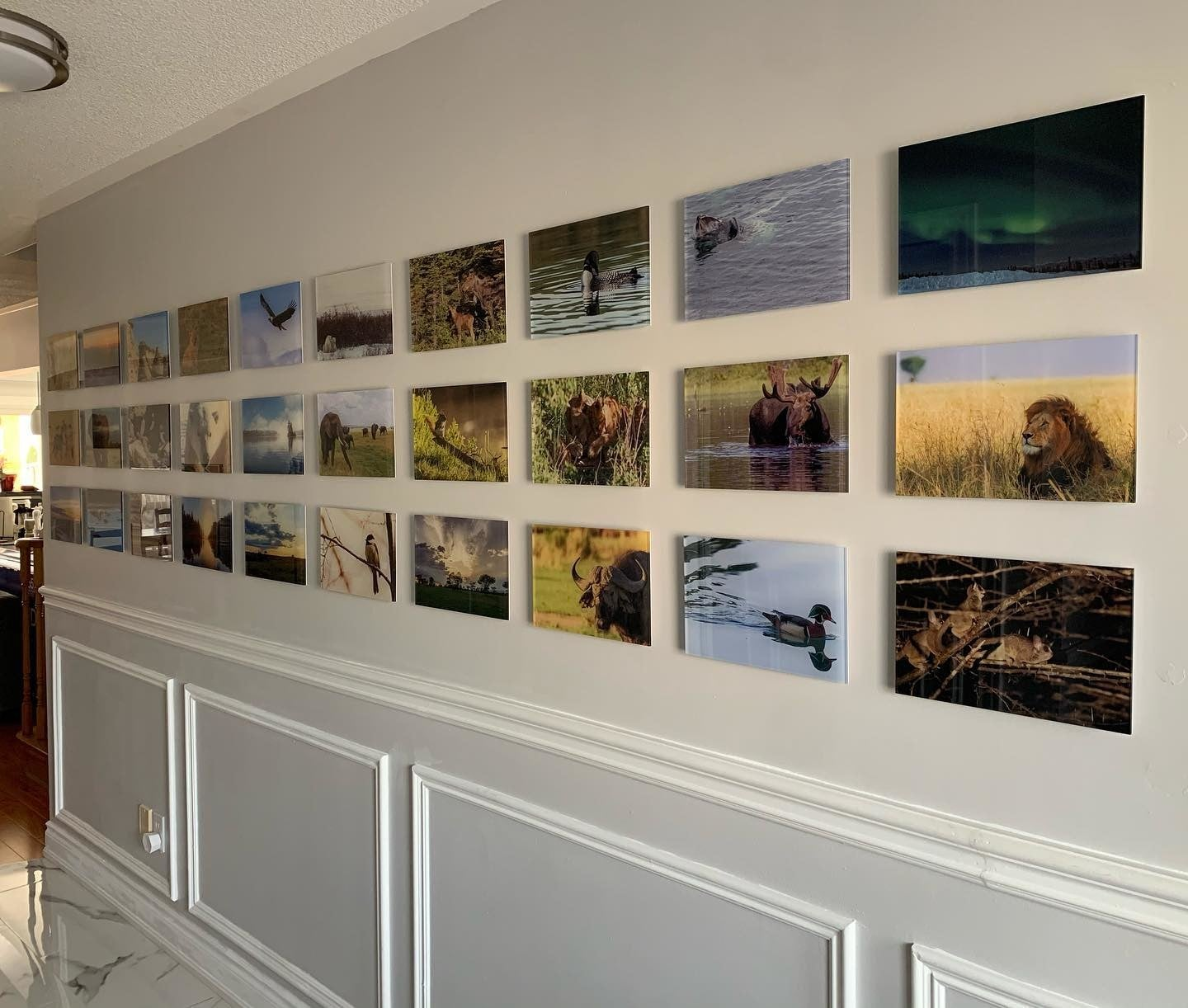 Gallery Wall of Acrylic Prints - Photo by Posterjack Canada Customer