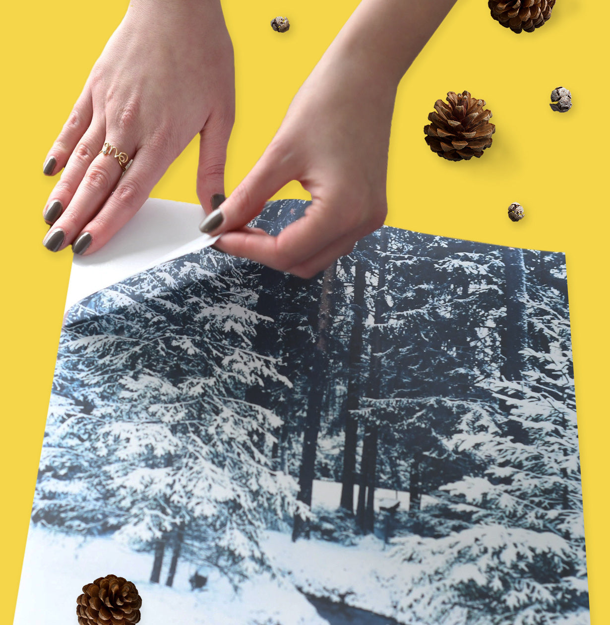Holiday Gift Guide & Stocking Stuffers for Kids - Posterjack Peel & Stick Prints