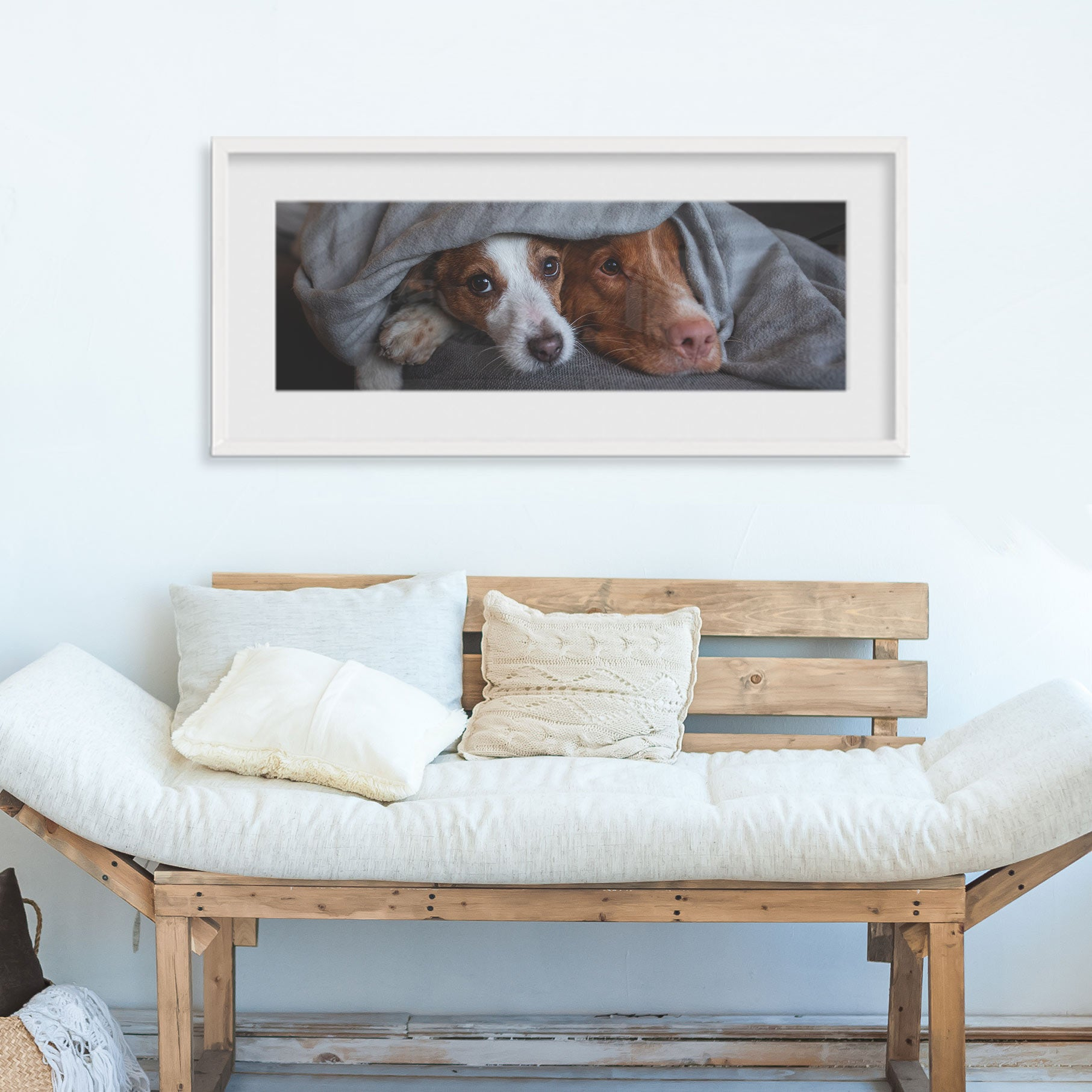 Panoramic Photo of Two Dogs Framed and Printed at Posterjack