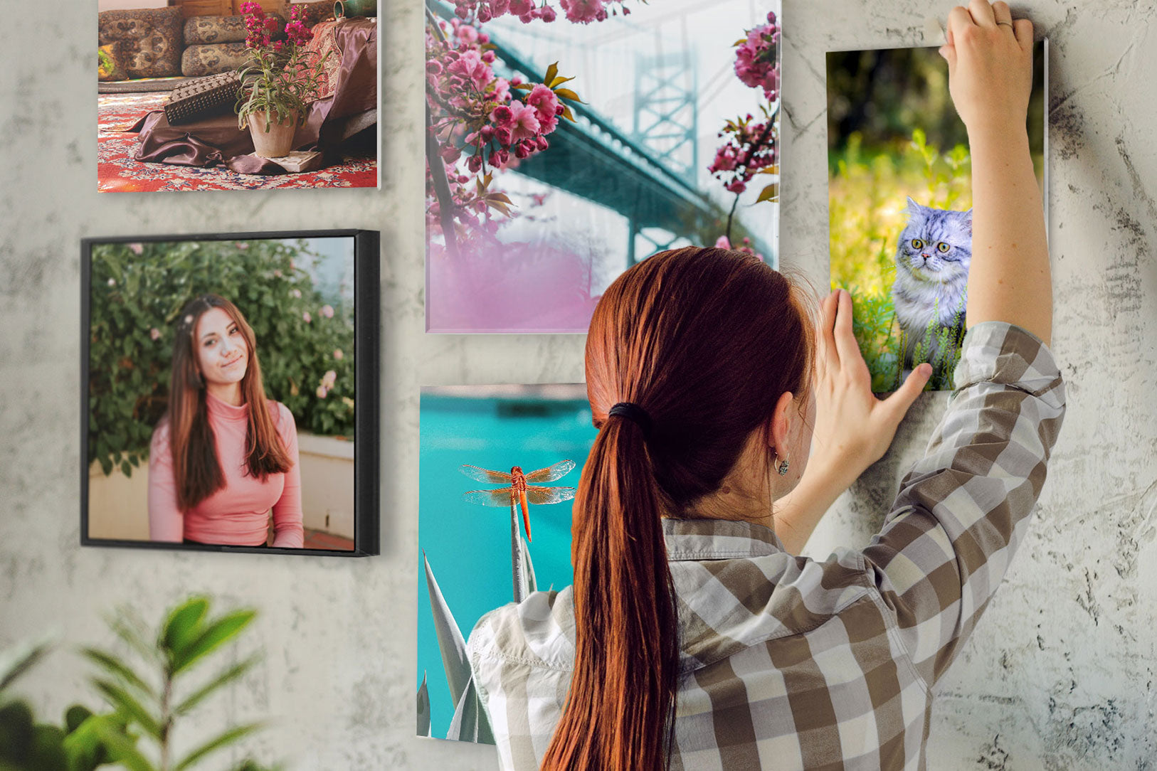 Person Creating Gallery Wall of Pictures Printed by Posterjack