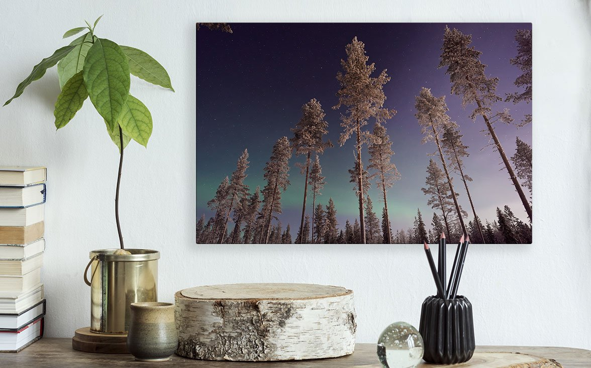 Photo Printed on HD Metal by Posterjack Canada