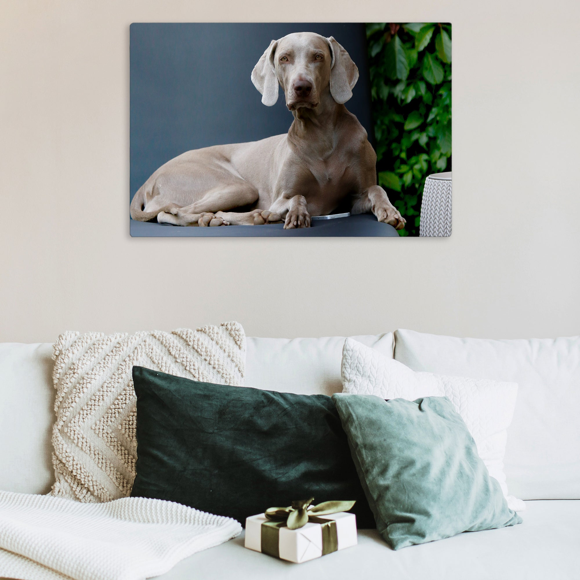 Posterjack HD Metal Print Photo of Dog