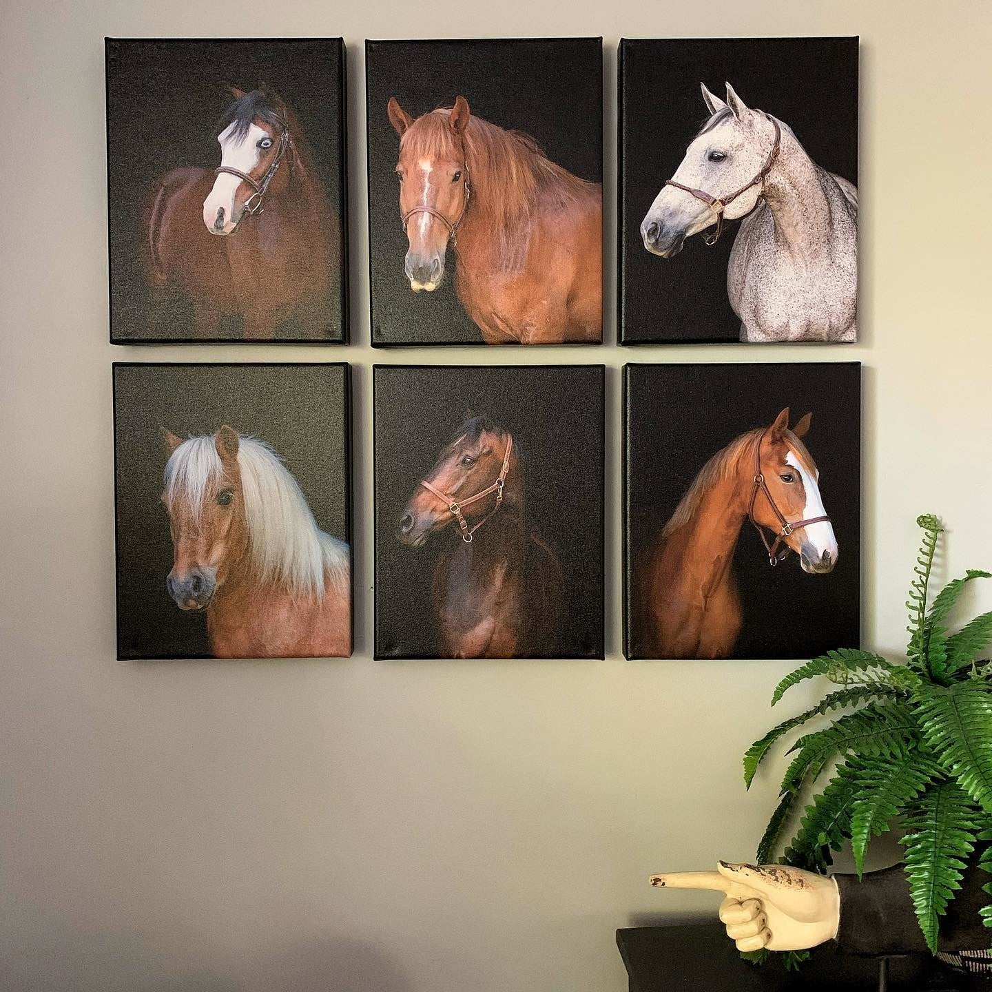Posterjack Customer Photo of Horse Portraits Printed on Canvas