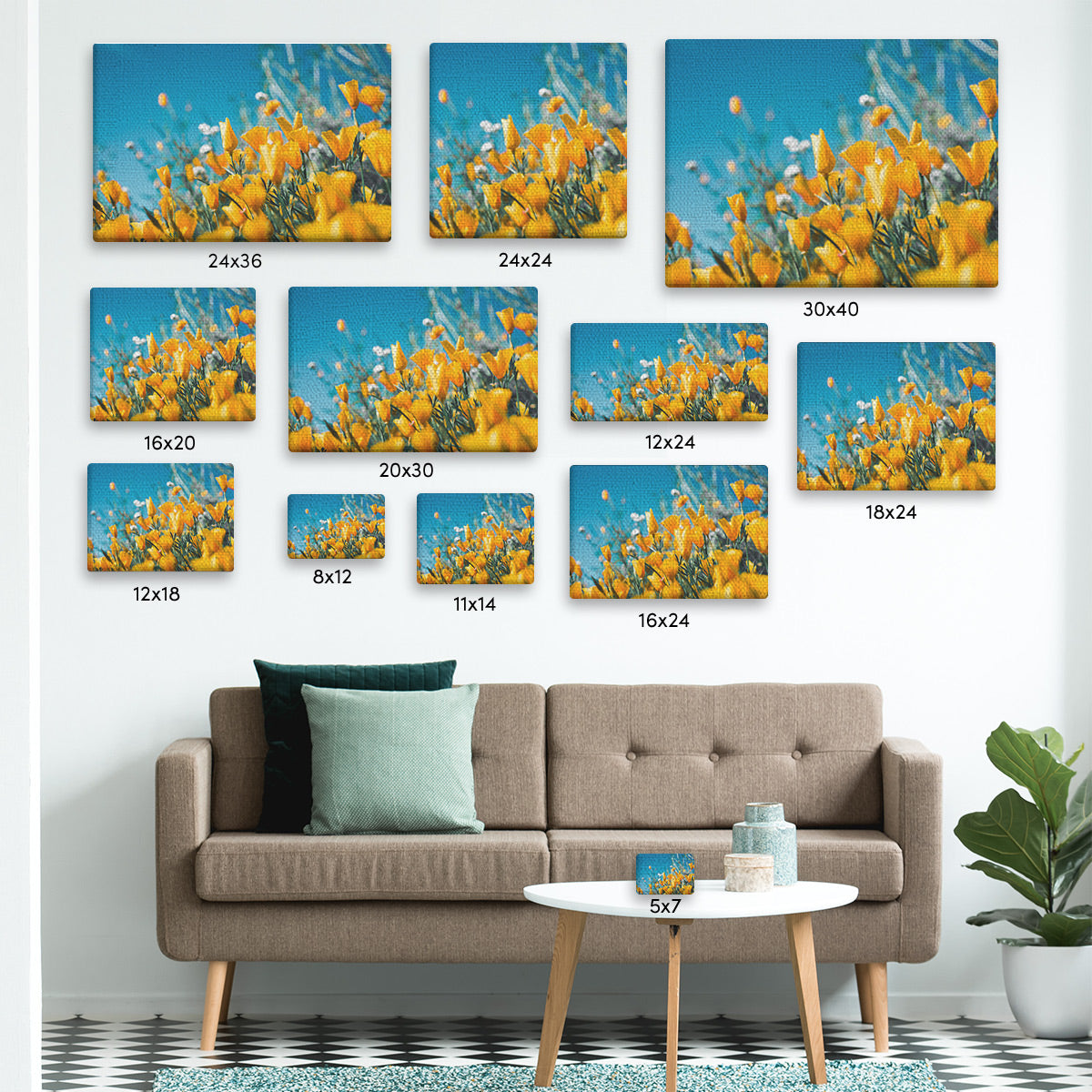 Standard Canvas Print Sizes Comparison Photo