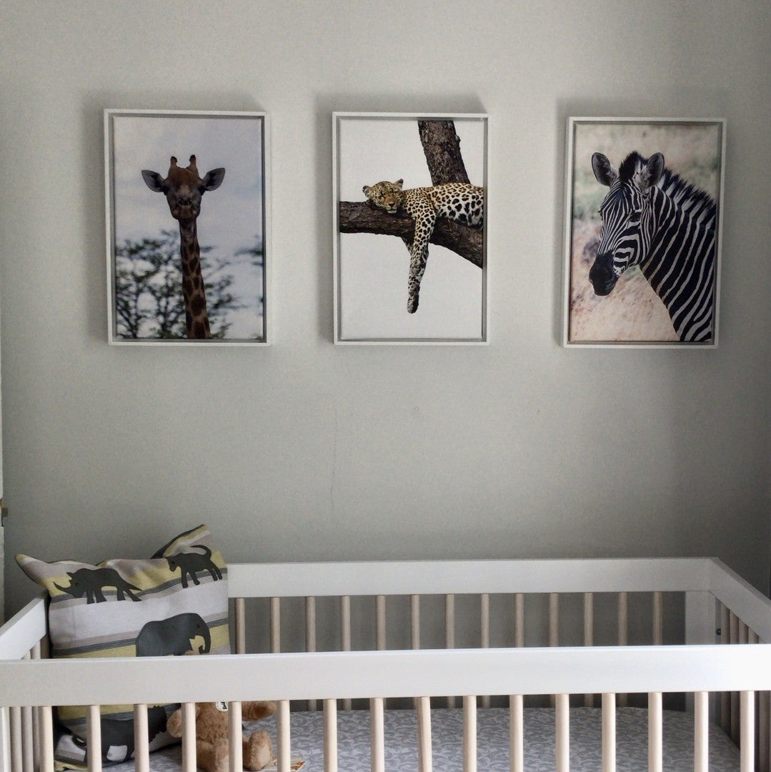 Animal Portraits Printed and Displayed in a Nursery