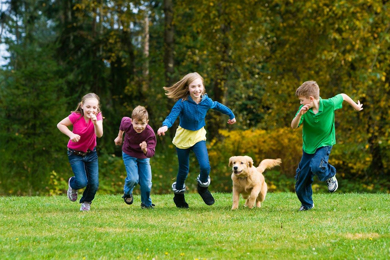 Action photo of children and dog running through a grassy field - understanding your camera's scene modes