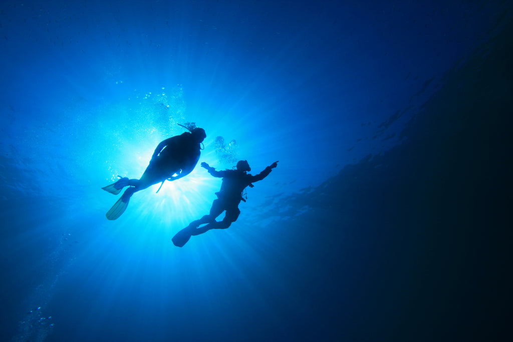 Underwater photo of two scuba divers