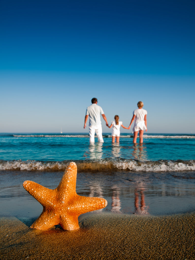 Bright orange starfish in sand with family walking into the ocean