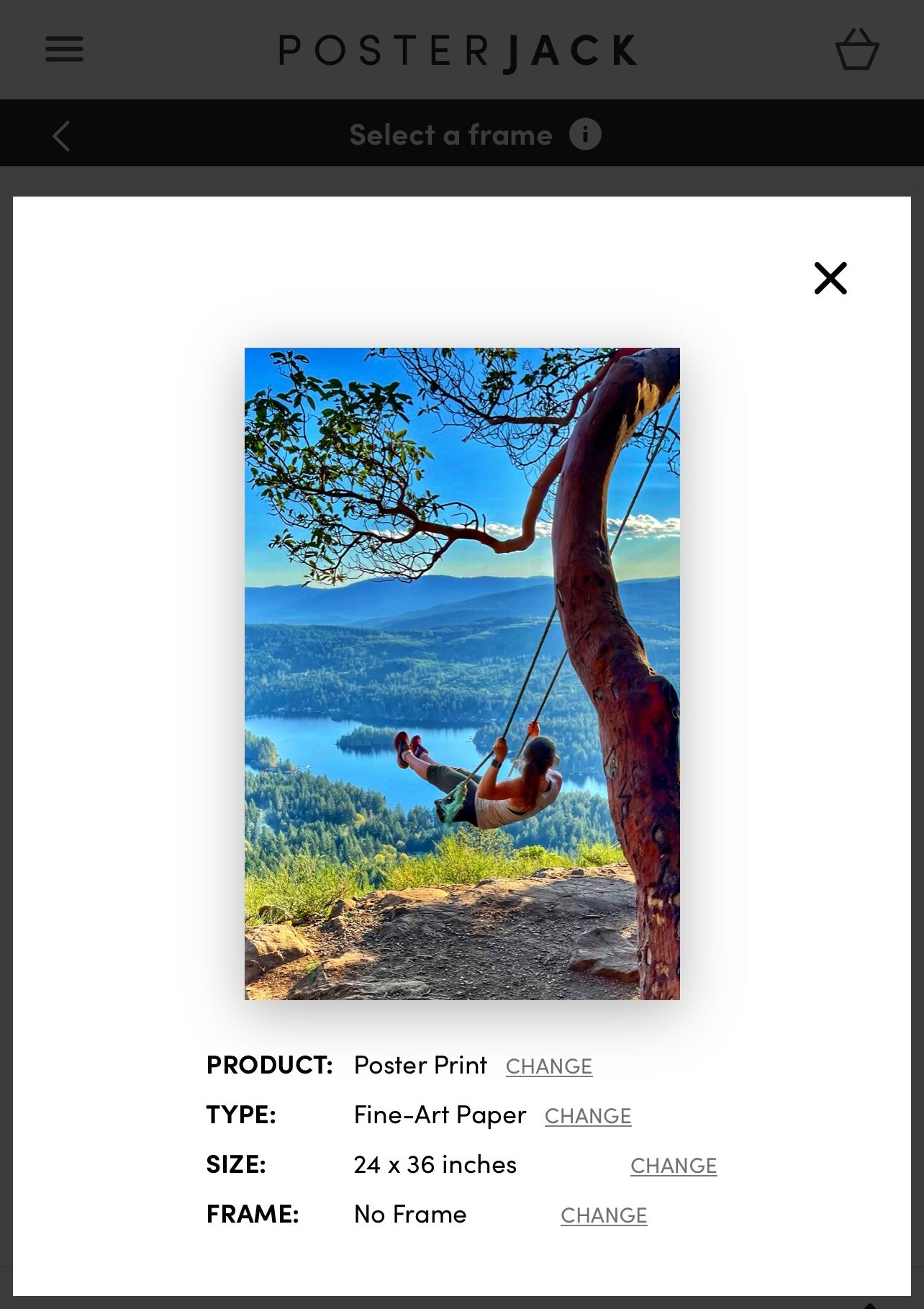 iPhone Picture Print Preview on Posterjack Canada Website