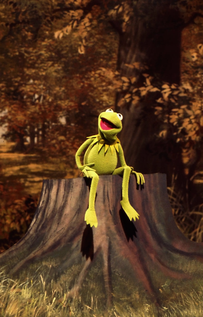 Kermit the Frog sitting on a tree stump