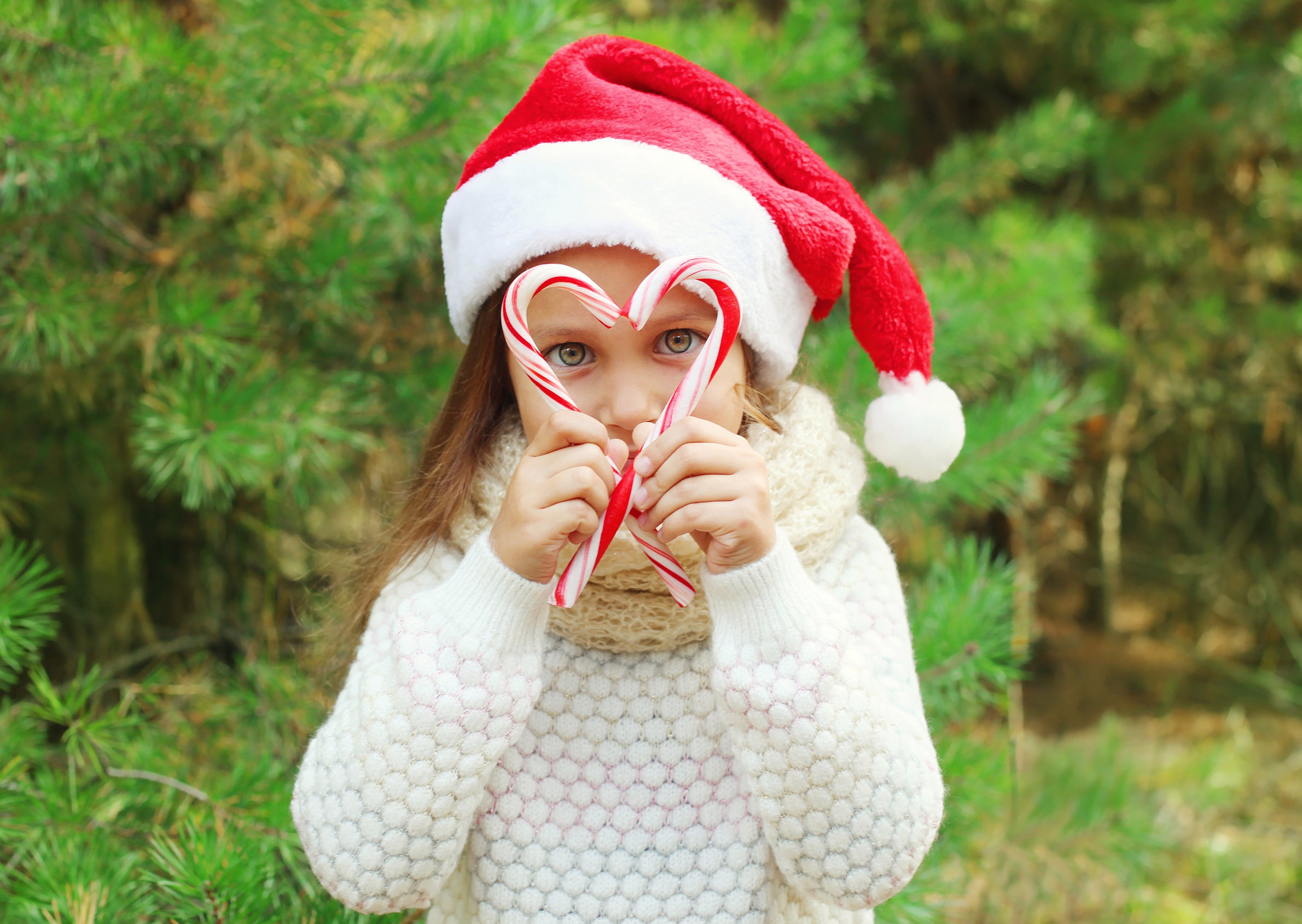 Holiday photo of a little girl holding candy canes and wearing a Santa hat outdoors