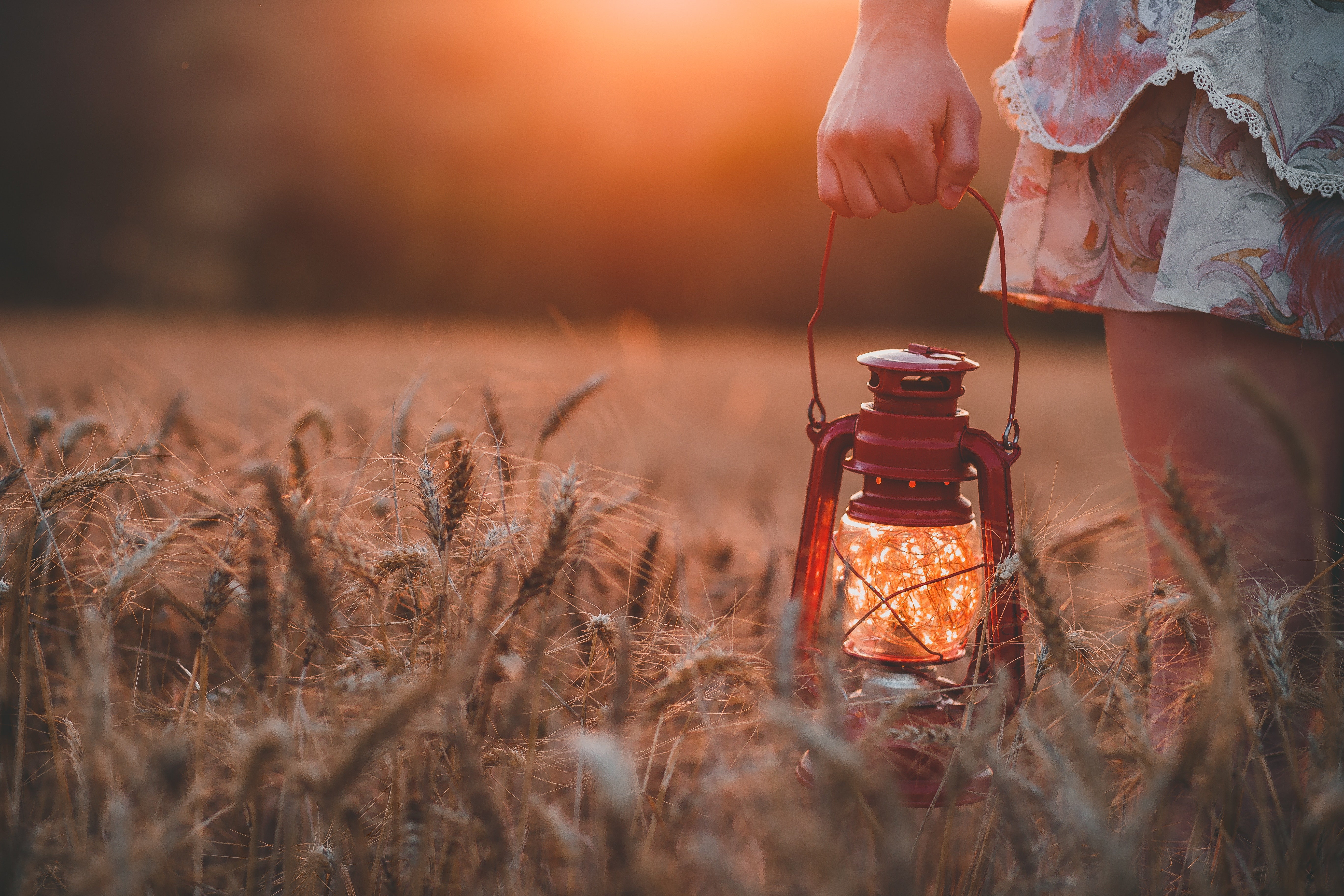 Girl holding a lantern in a field of wheat at sunset