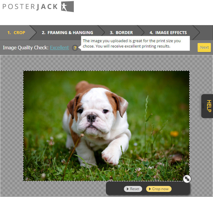 Screenshot of the Posterjack website illustrating the Image Quality Check tool