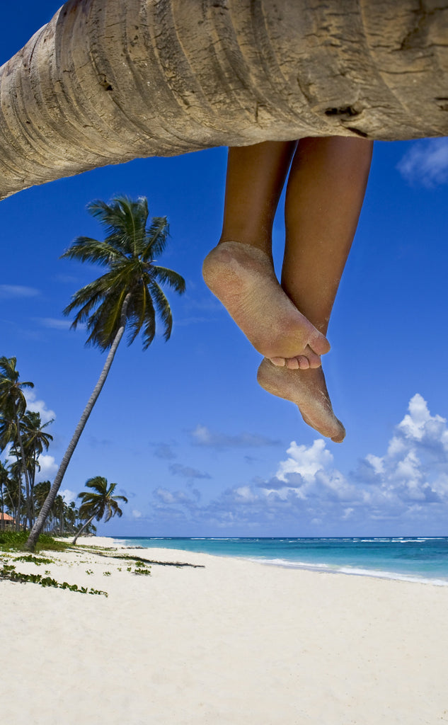 Beach photo of sandy legs and feet from person sitting on a tree branch