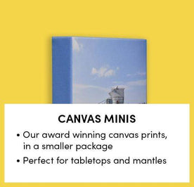 Canvas Minis Image
