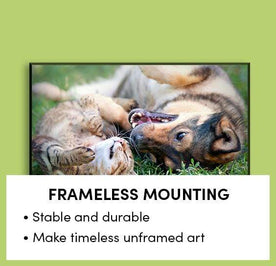 Frameless Mounting Image