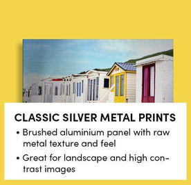 Classic Silver Metal Prints Image