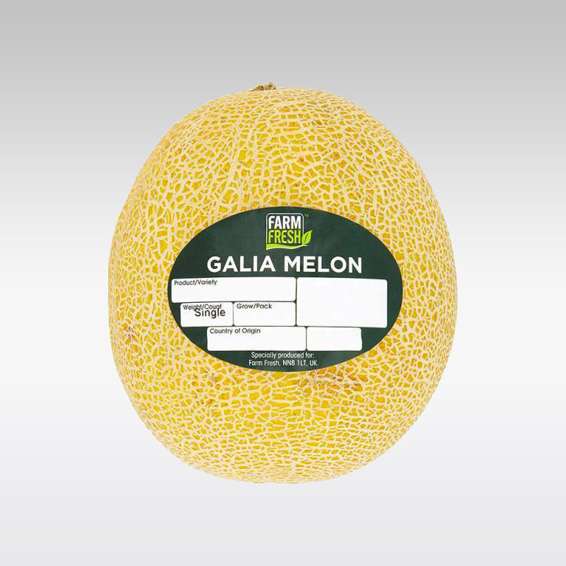 Cantaloupe Melon (Single)