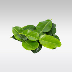 Fresh Lime Leaves 10g