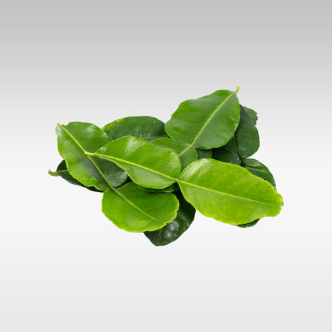 Lime Leaves (Pack of 2)