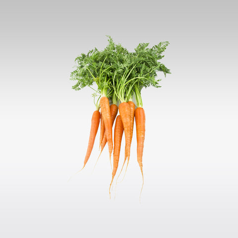 Carrot with Tops (Box)