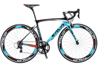 Carbon fiber road bike with blue trim