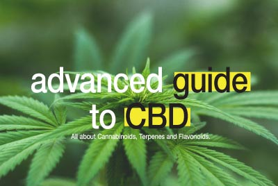 advanced guide to CBD