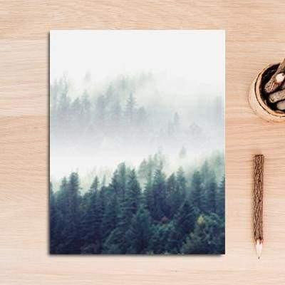 Fabulous Trio Foggy Forest | Zenk Canvas print - Wall Art A / 60x90cm