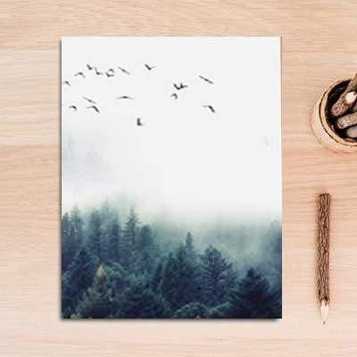 Fabulous Trio Foggy Forest | Zenk Canvas print - Wall Art C / 60x90cm