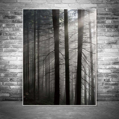 Roll In The Deep | The Forest Canvas print - Wall Art Forest Three / 60X90cm